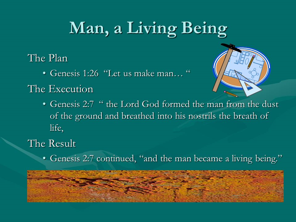 Man, a Living Being The Plan Genesis 1:26 Let us make man…Genesis 1:26 Let us make man… The Execution Genesis 2:7 the Lord God formed the man from the dust of the ground and breathed into his nostrils the breath of life,Genesis 2:7 the Lord God formed the man from the dust of the ground and breathed into his nostrils the breath of life, The Result Genesis 2:7 continued, and the man became a living being.Genesis 2:7 continued, and the man became a living being.