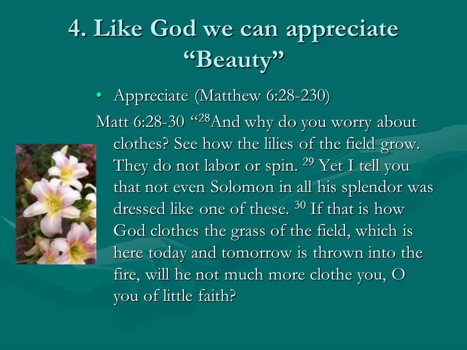 4. Like God we can appreciate Beauty Appreciate (Matthew 6:28-230)Appreciate (Matthew 6:28-230) Matt 6:28-30 28 And why do you worry about clothes? Se