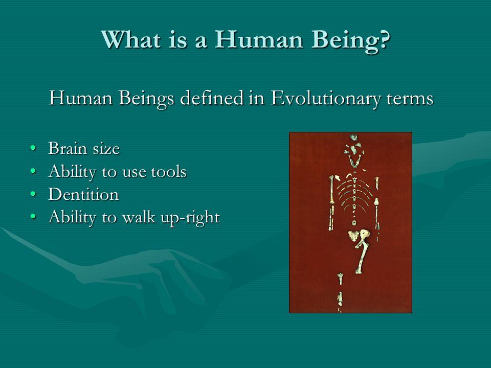 What is a Human Being. What is a Human Being.