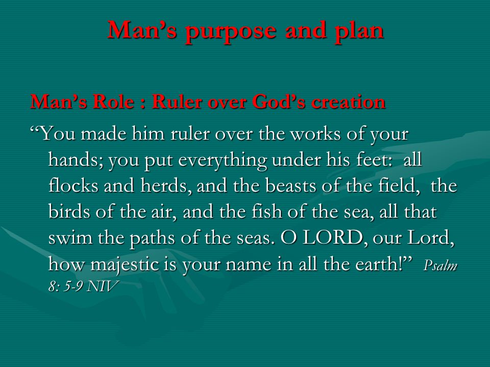 Mans purpose and plan Mans Role : Ruler over Gods creation You made him ruler over the works of your hands; you put everything under his feet: all flo