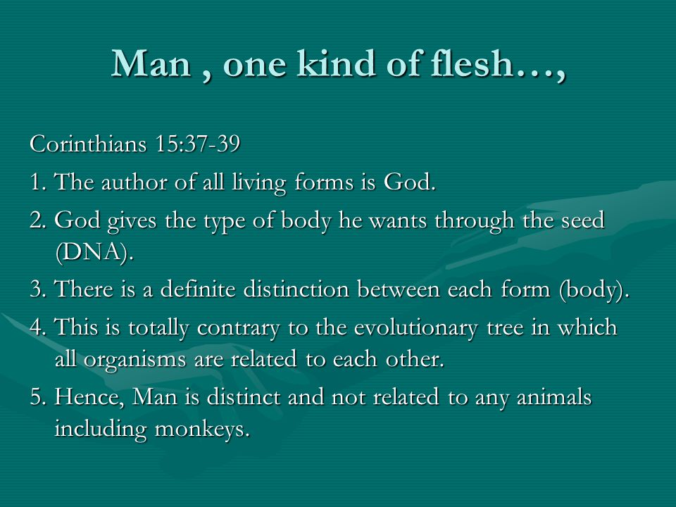 Man, one kind of flesh…, Corinthians 15:37-39 1. The author of all living forms is God. 2. God gives the type of body he wants through the seed (DNA).