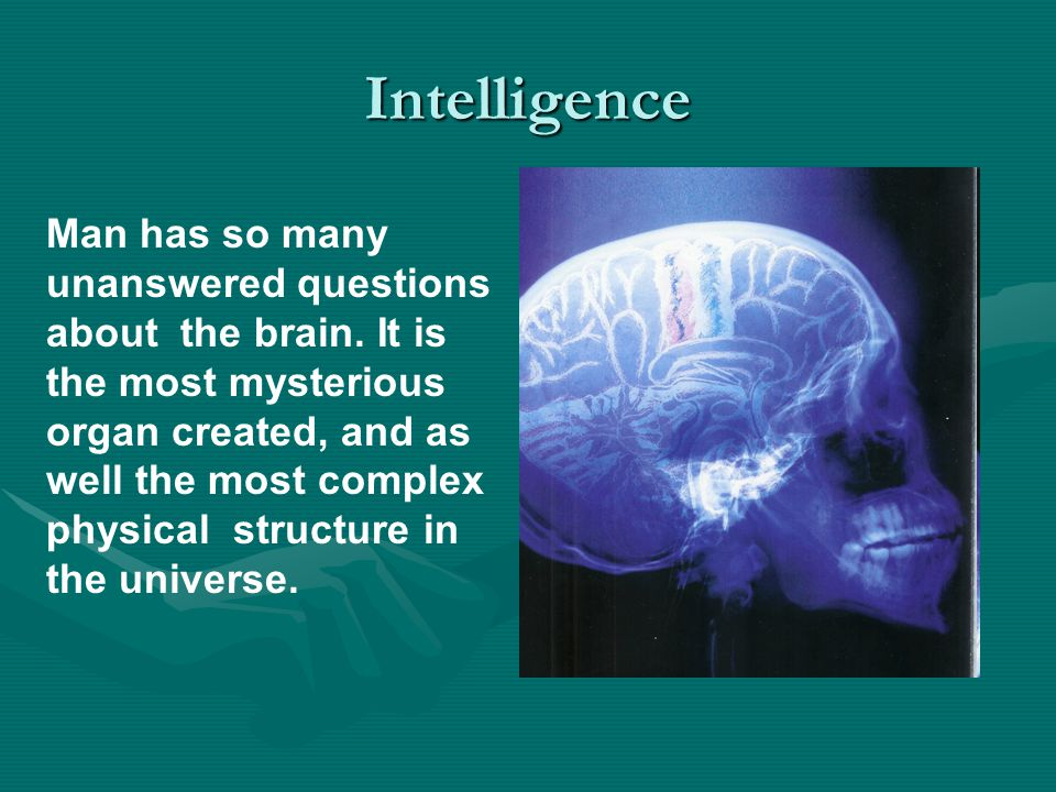 Intelligence Man has so many unanswered questions about the brain.