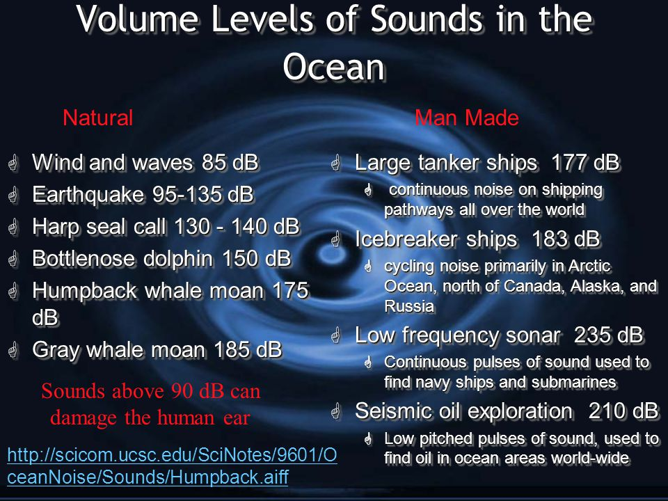 Noise Pollution Marine animals, particularly marine mammals and fish, use sound for reproduction, feeding, predator avoidance, and navigation (Popper 2003).