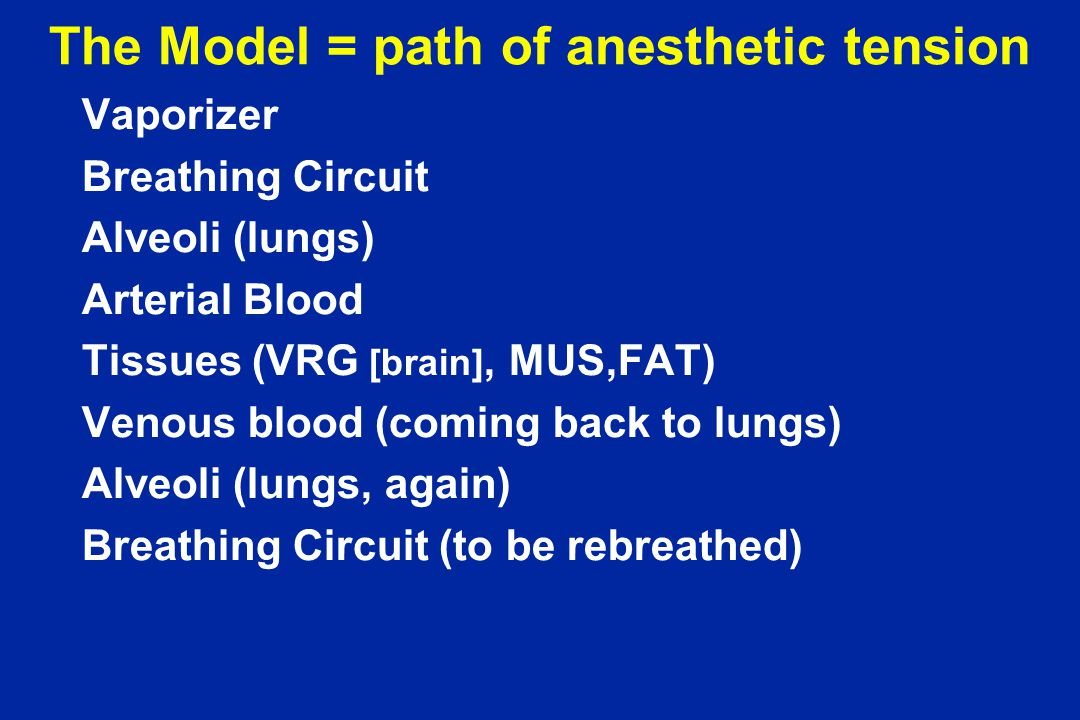 The Model = path of anesthetic tension Vaporizer Breathing Circuit Alveoli (lungs) Arterial Blood Tissues (VRG [brain], MUS,FAT) Venous blood (coming back to lungs) Alveoli (lungs, again) Breathing Circuit (to be rebreathed)