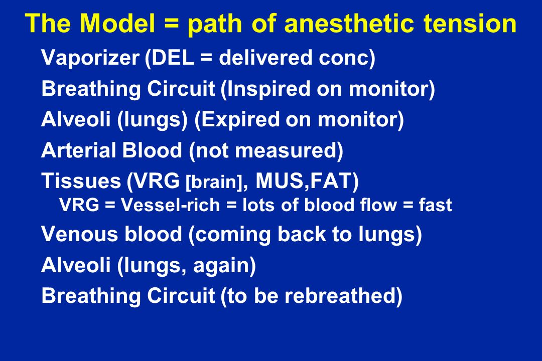 The Model = path of anesthetic tension Vaporizer (DEL = delivered conc) Breathing Circuit (Inspired on monitor) Alveoli (lungs) (Expired on monitor) Arterial Blood (not measured) Tissues (VRG [brain], MUS,FAT) VRG = Vessel-rich = lots of blood flow = fast Venous blood (coming back to lungs) Alveoli (lungs, again) Breathing Circuit (to be rebreathed)