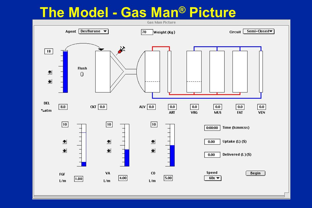 The Model - Gas Man ® Picture