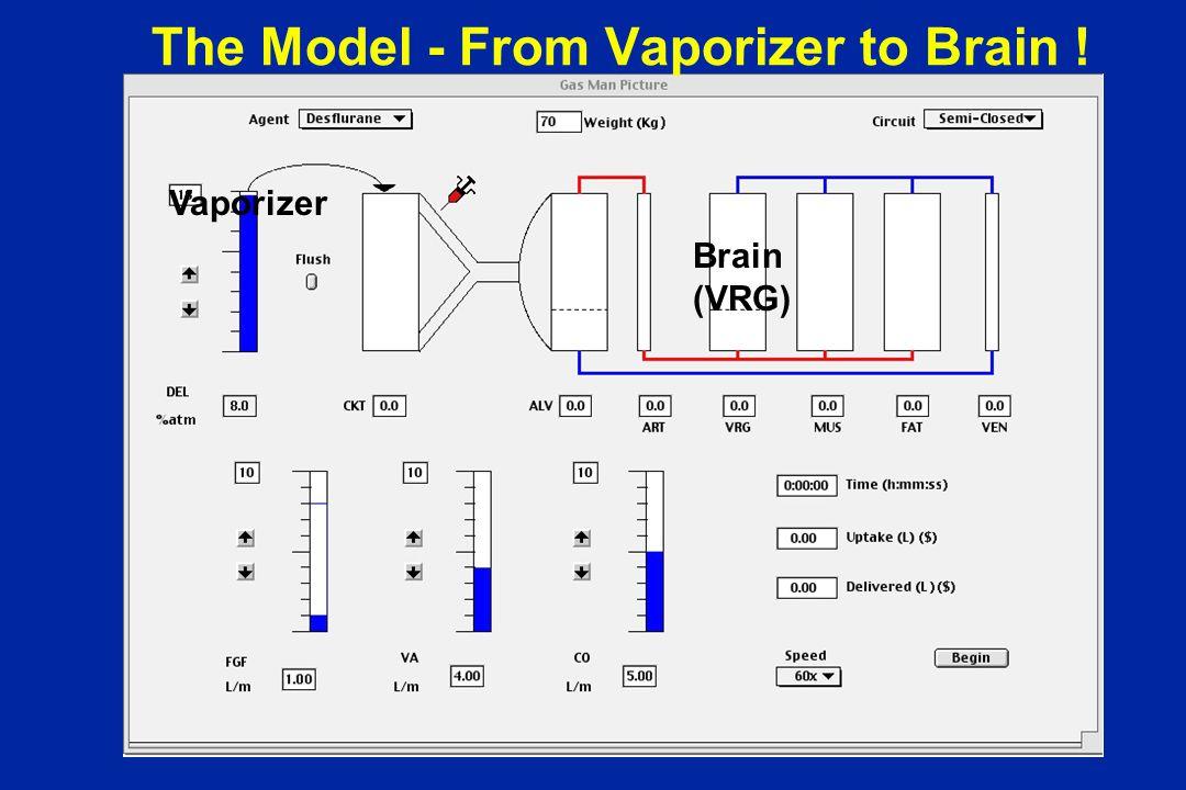 The Model - From Vaporizer to Brain ! Vaporizer Brain (VRG)