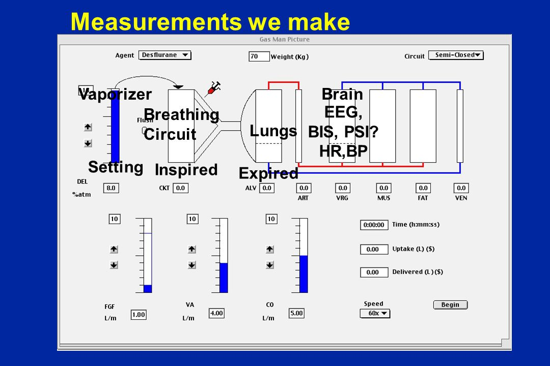 Measurements we make Breathing Circuit Lungs Vaporizer Setting Inspired Expired Brain EEG, BIS, PSI.