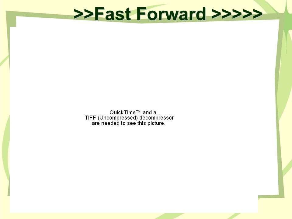 >>Fast Forward >>>>>