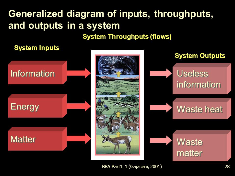 BBA Part1_1 (Gajaseni, 2001)28 Generalized diagram of inputs, throughputs, and outputs in a system System Throughputs (flows) System Inputs System Outputs Information Energy Matter Information Energy Matter Useless information Waste heat Waste matter Useless information Waste heat Waste matter