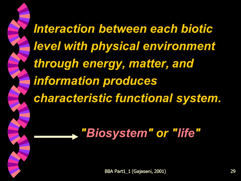 BBA Part1_1 (Gajaseni, 2001)29 Interaction between each biotic level with physical environment through energy, matter, and information produces characteristic functional system.