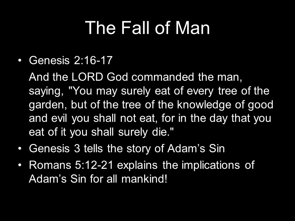The Fall of Man Genesis 2:16-17 And the LORD God commanded the man, saying, You may surely eat of every tree of the garden, but of the tree of the knowledge of good and evil you shall not eat, for in the day that you eat of it you shall surely die. Genesis 3 tells the story of Adams Sin Romans 5:12-21 explains the implications of Adams Sin for all mankind!