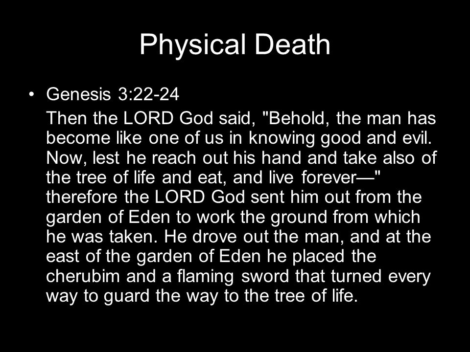 Physical Death Genesis 3:22-24 Then the LORD God said, Behold, the man has become like one of us in knowing good and evil.