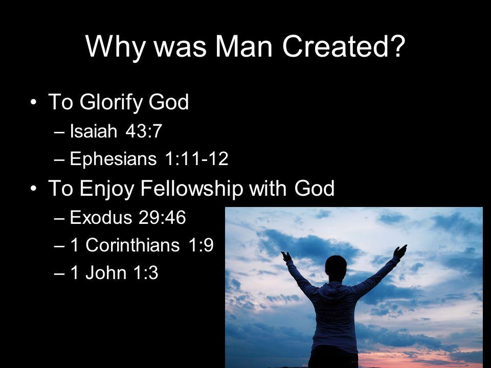 The Deaths of Adam Spiritual Death and Physical Death
