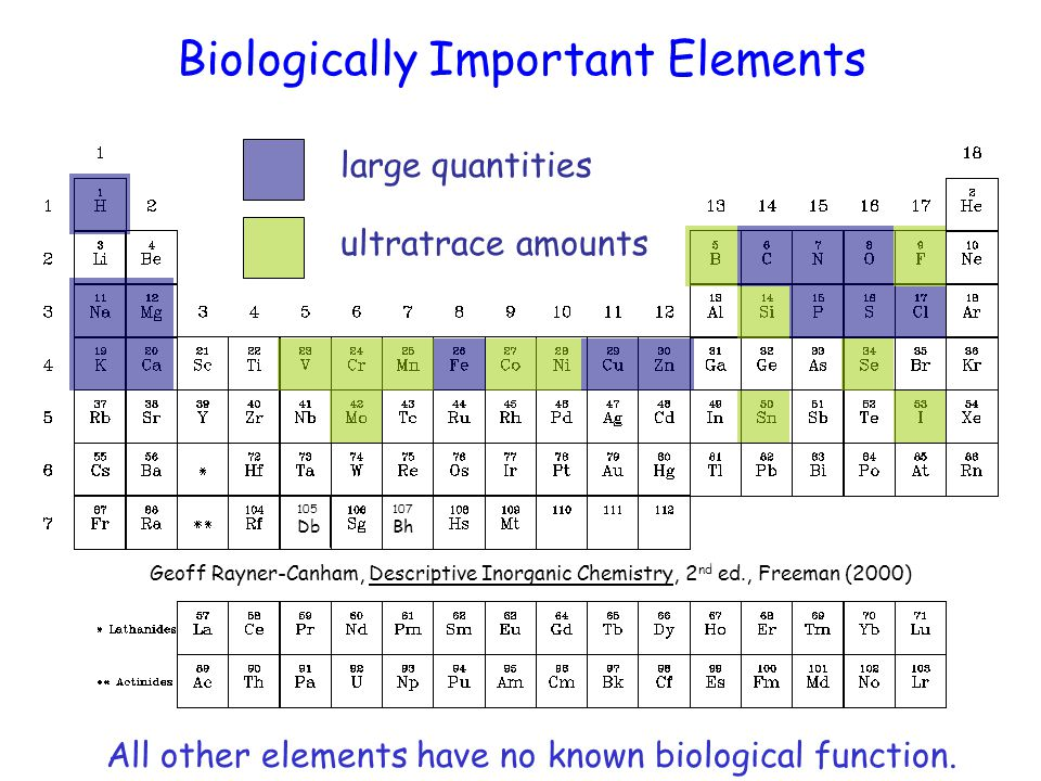 Elements considered particularly toxic 105 Db 107 Bh toxic Geoff Rayner-Canham, Descriptive Inorganic Chemistry, 2 nd ed., Freeman (2000)