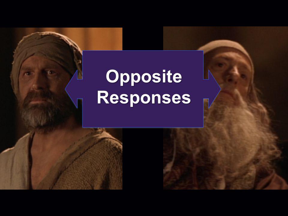 Opposite Responses