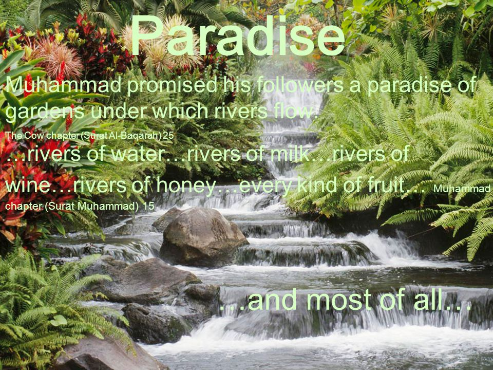 Paradise Muhammad promised his followers a paradise of gardens under which rivers flow. The Cow chapter (Surat Al-Baqarah) 25 …rivers of water…rivers