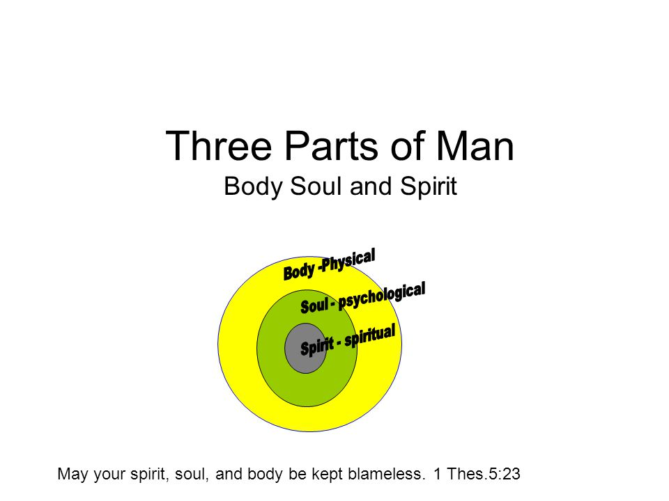 Three Parts of Man Body Soul and Spirit May your spirit, soul, and body be kept blameless.