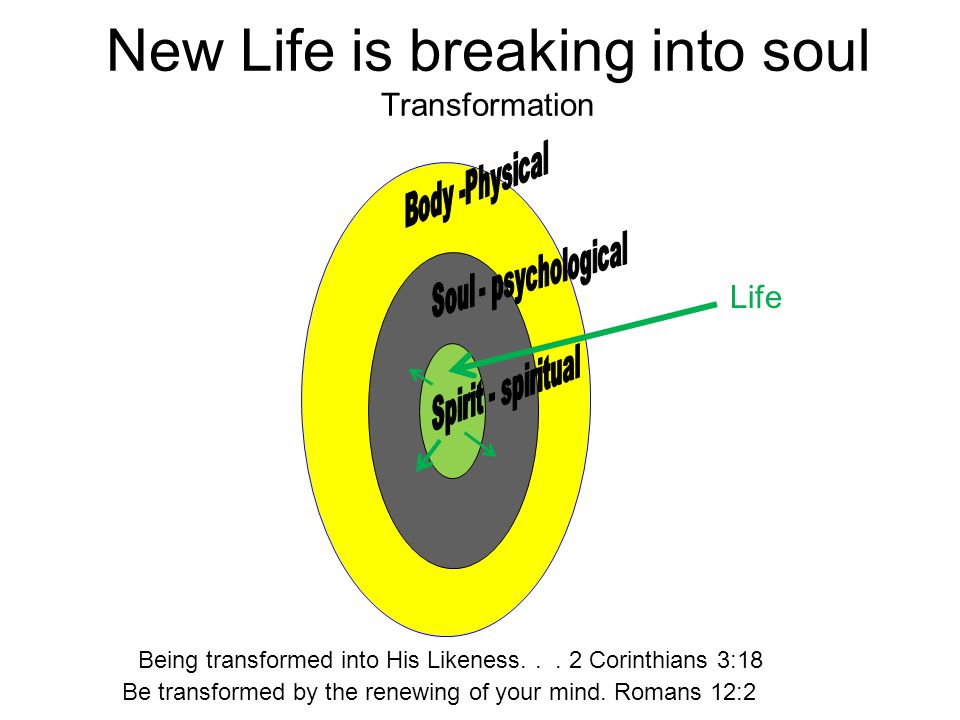 New Life is breaking into soul Transformation Life Be transformed by the renewing of your mind. Romans 12:2 Being transformed into His Likeness... 2 C
