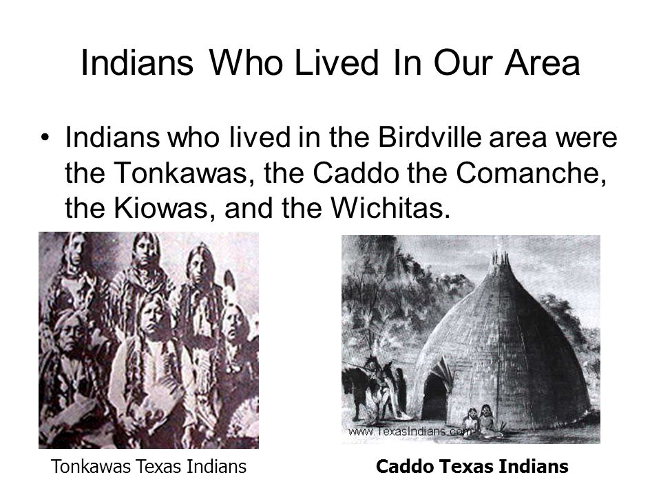 Indians Who Lived In Our Area Indians who lived in the Birdville area were the Tonkawas, the Caddo the Comanche, the Kiowas, and the Wichitas.