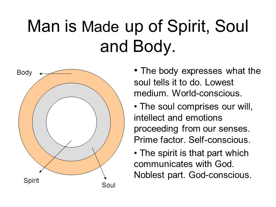 Man – The New Tabernacle of God adapted from Dr.Michael K.