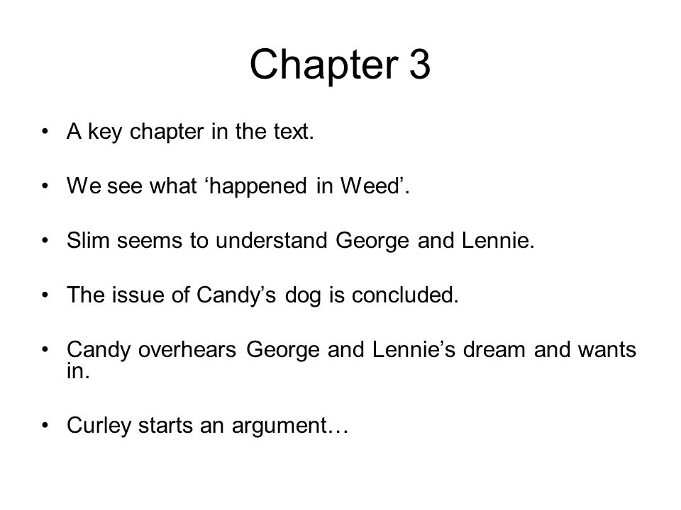 Chapter 3 A key chapter in the text. We see what happened in Weed. Slim seems to understand George and Lennie. The issue of Candys dog is concluded. C