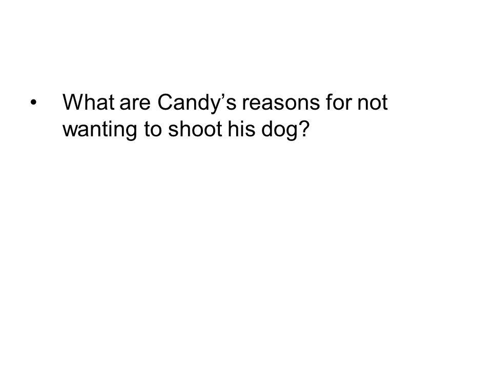 What are Candys reasons for not wanting to shoot his dog?