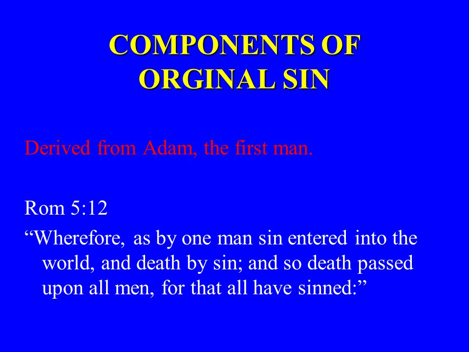 COMPONENTS OF ORGINAL SIN Derived from Adam, the first man.