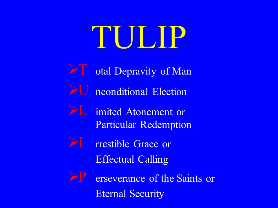 TULIP T otal Depravity of Man U nconditional Election L imited Atonement or Particular Redemption I rrestible Grace or Effectual Calling P erseverance of the Saints or Eternal Security