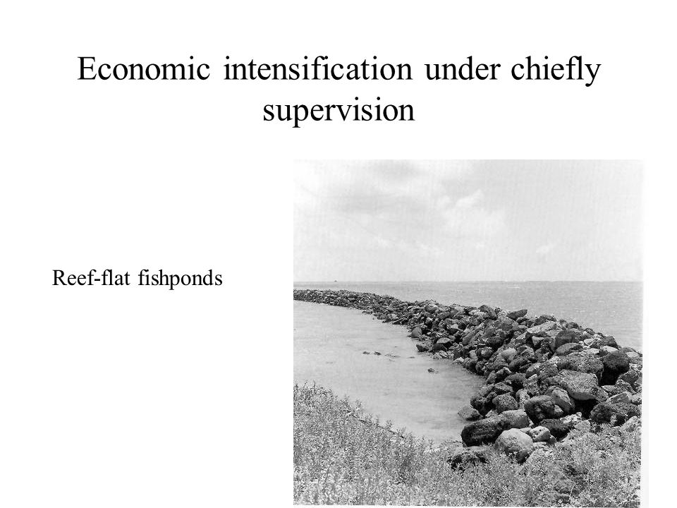 Economic intensification under chiefly supervision Reef-flat fishponds