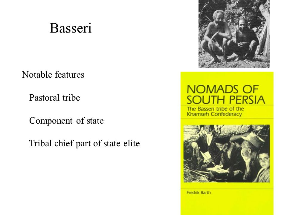 Basseri Notable features Pastoral tribe Component of state Tribal chief part of state elite