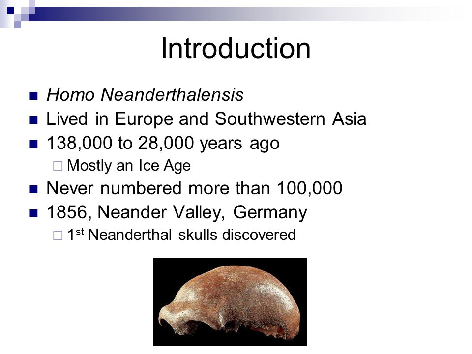 Introduction Homo Neanderthalensis Lived in Europe and Southwestern Asia 138,000 to 28,000 years ago Mostly an Ice Age Never numbered more than 100,000 1856, Neander Valley, Germany 1 st Neanderthal skulls discovered