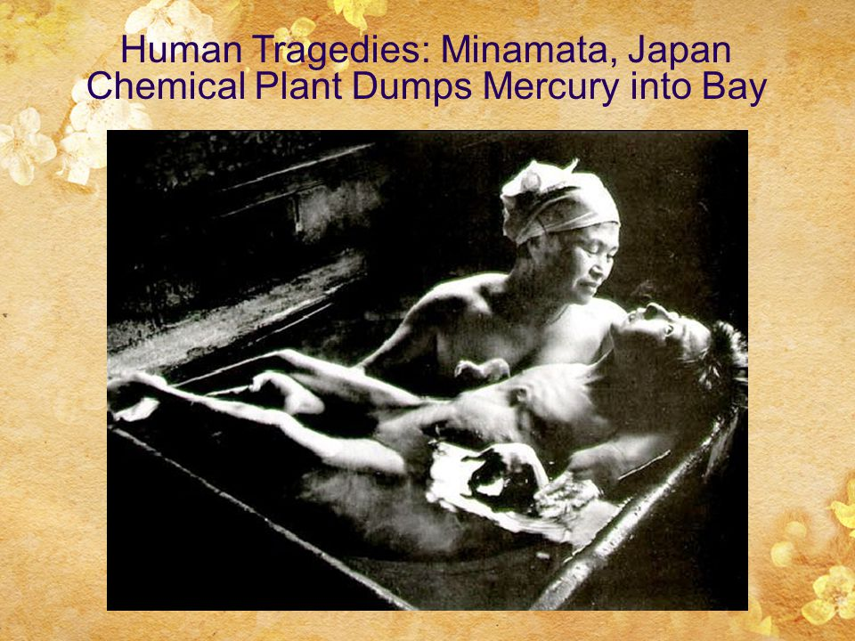 Human Tragedies: Minamata, Japan Chemical Plant Dumps Mercury into Bay