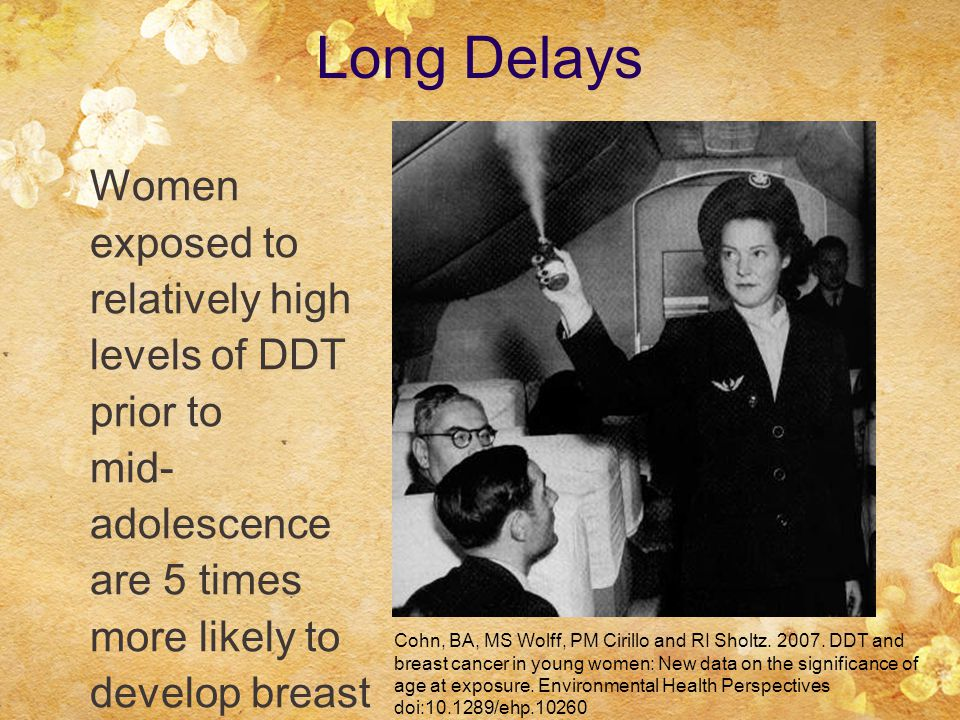 Women exposed to relatively high levels of DDT prior to mid- adolescence are 5 times more likely to develop breast cancer Cohn, BA, MS Wolff, PM Cirillo and RI Sholtz.