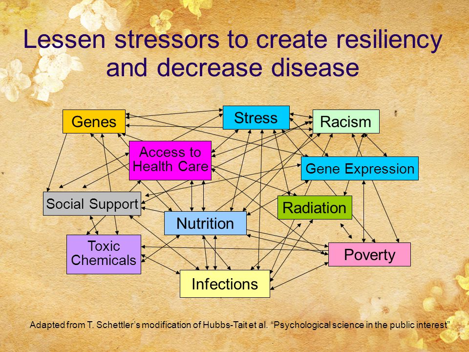 Lessen stressors to create resiliency and decrease disease Adapted from T.