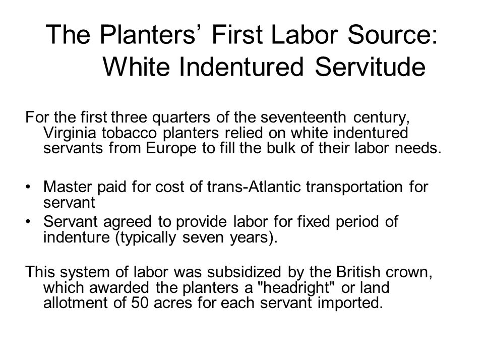 The Planters First Labor Source: White Indentured Servitude For the first three quarters of the seventeenth century, Virginia tobacco planters relied on white indentured servants from Europe to fill the bulk of their labor needs.