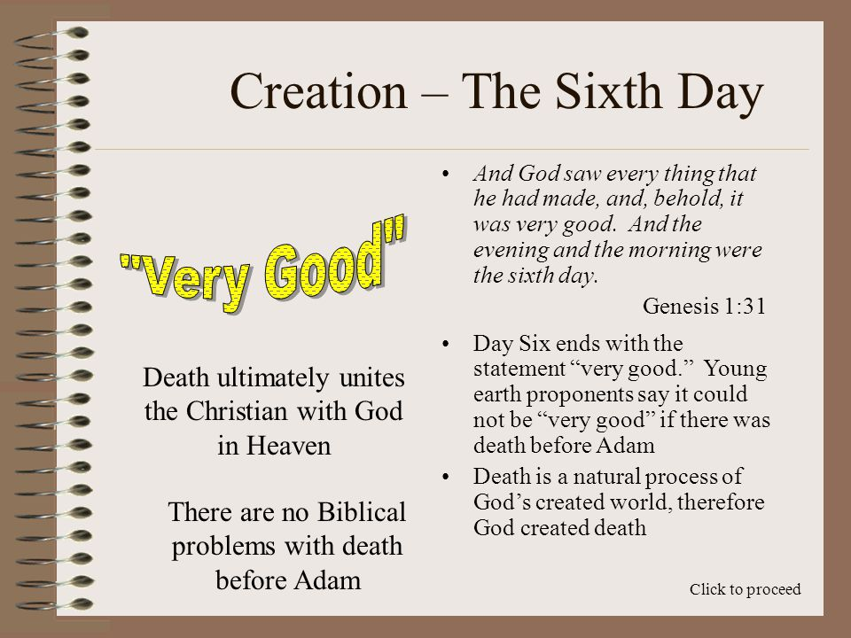 Creation – The Sixth Day Second, God did not say they could not eat meat…He merely said that they could eat the plants Click to proceed Finally, looking at our modern food cycle, animals that eat meat, such as lions, are ultimately plant eaters The lions eat the grazing animals, which live off of grasses.