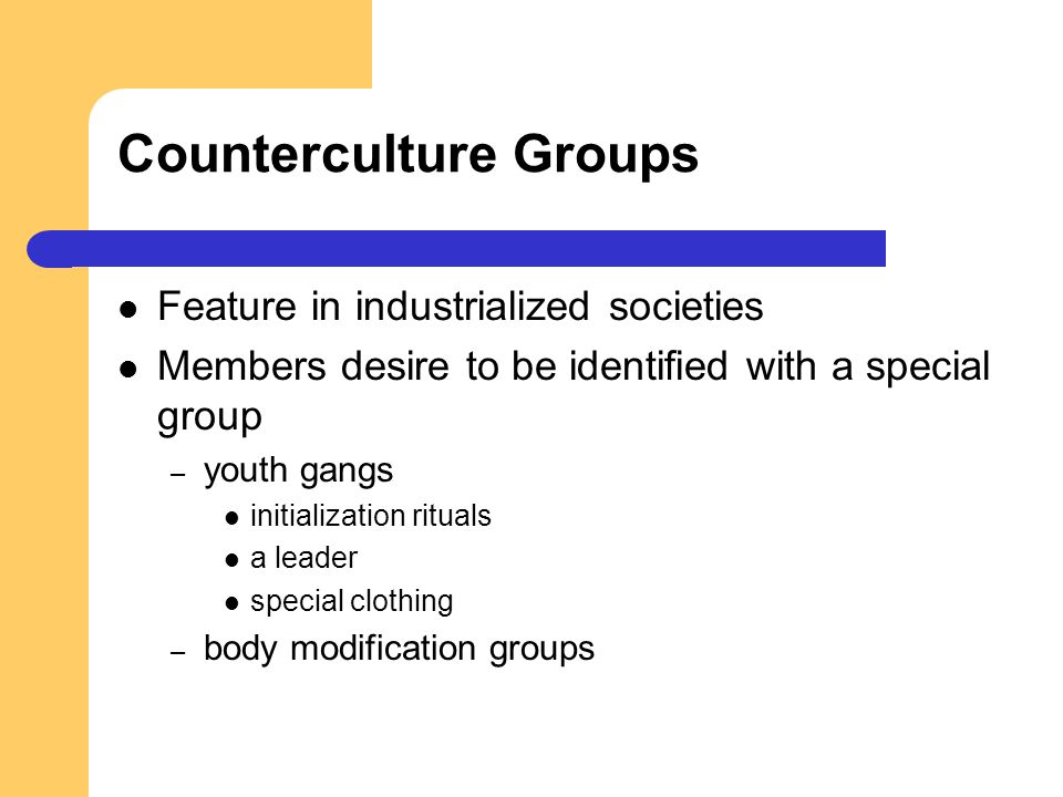Counterculture Groups Feature in industrialized societies Members desire to be identified with a special group – youth gangs initialization rituals a