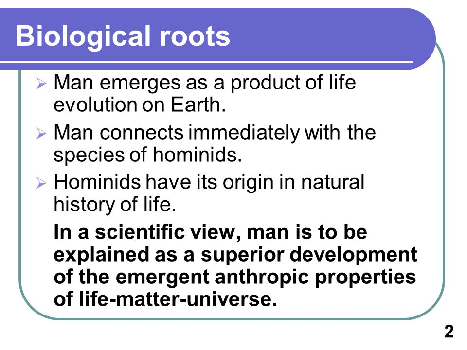 Biological roots Man emerges as a product of life evolution on Earth.