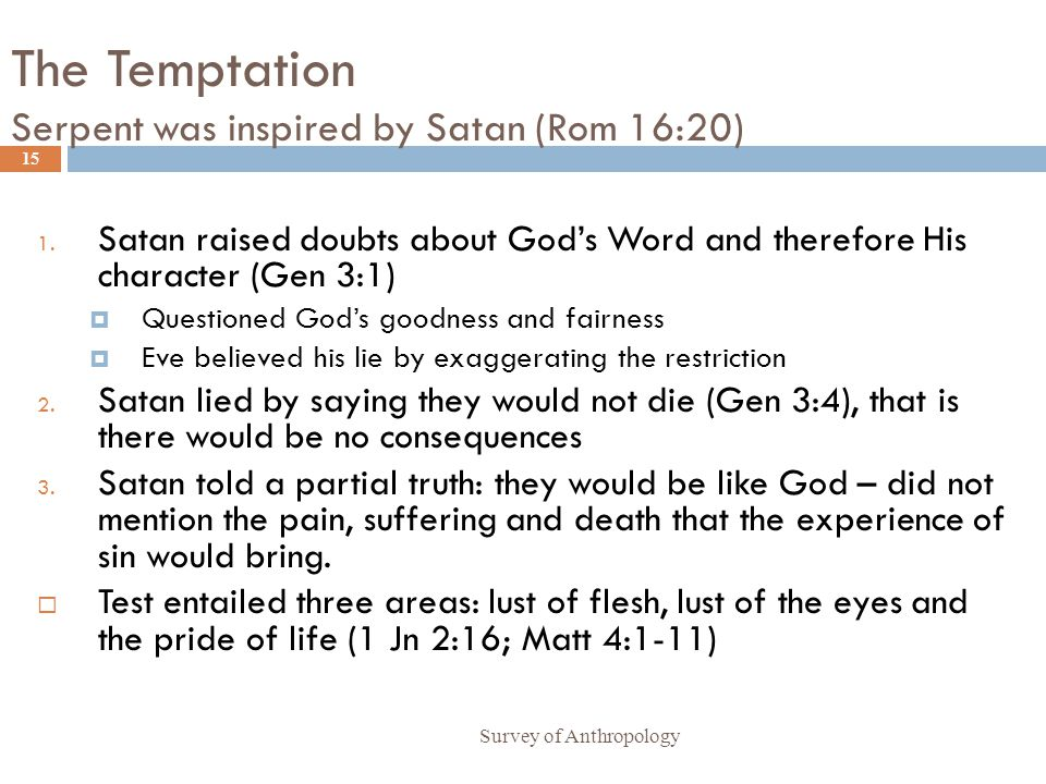 The Temptation Serpent was inspired by Satan (Rom 16:20) Survey of Anthropology 15 1.