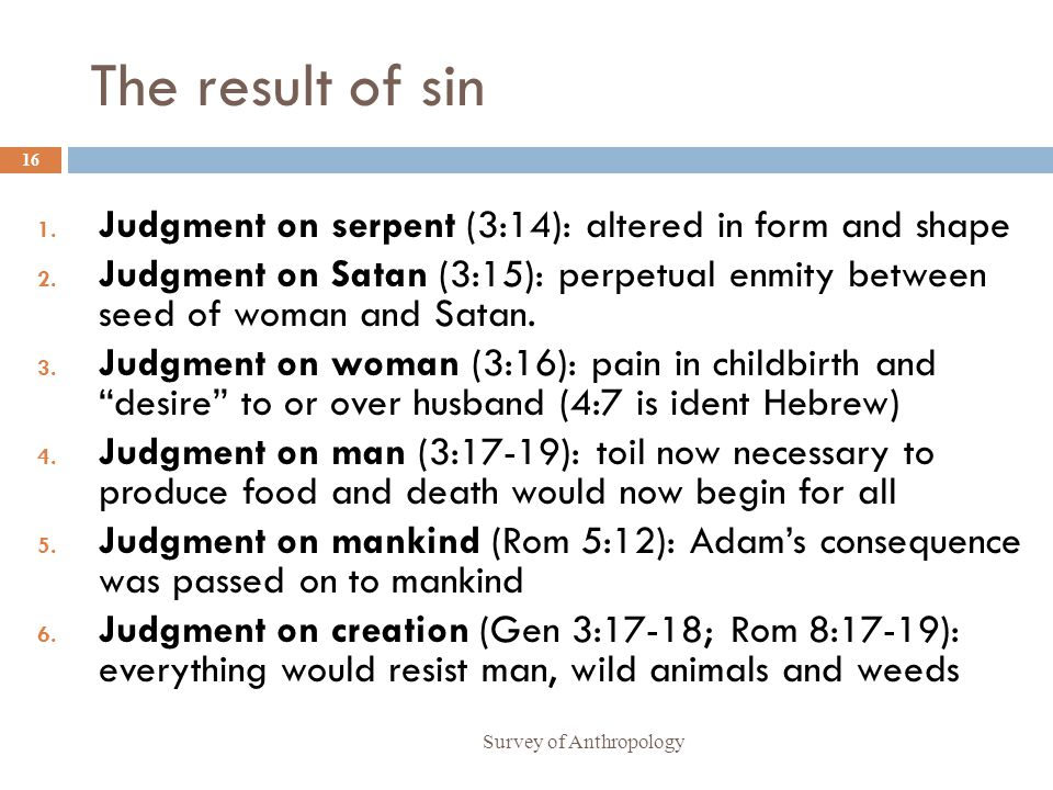 The result of sin Survey of Anthropology 16 1.