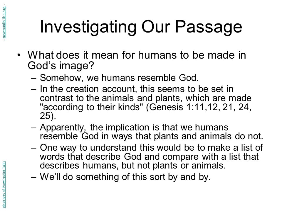 What is an Image.What does it mean for something to be made in our image.