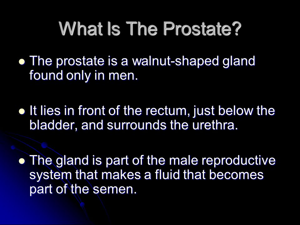 What Is The Prostate? The prostate is a walnut-shaped gland found only in men. The prostate is a walnut-shaped gland found only in men. It lies in fro