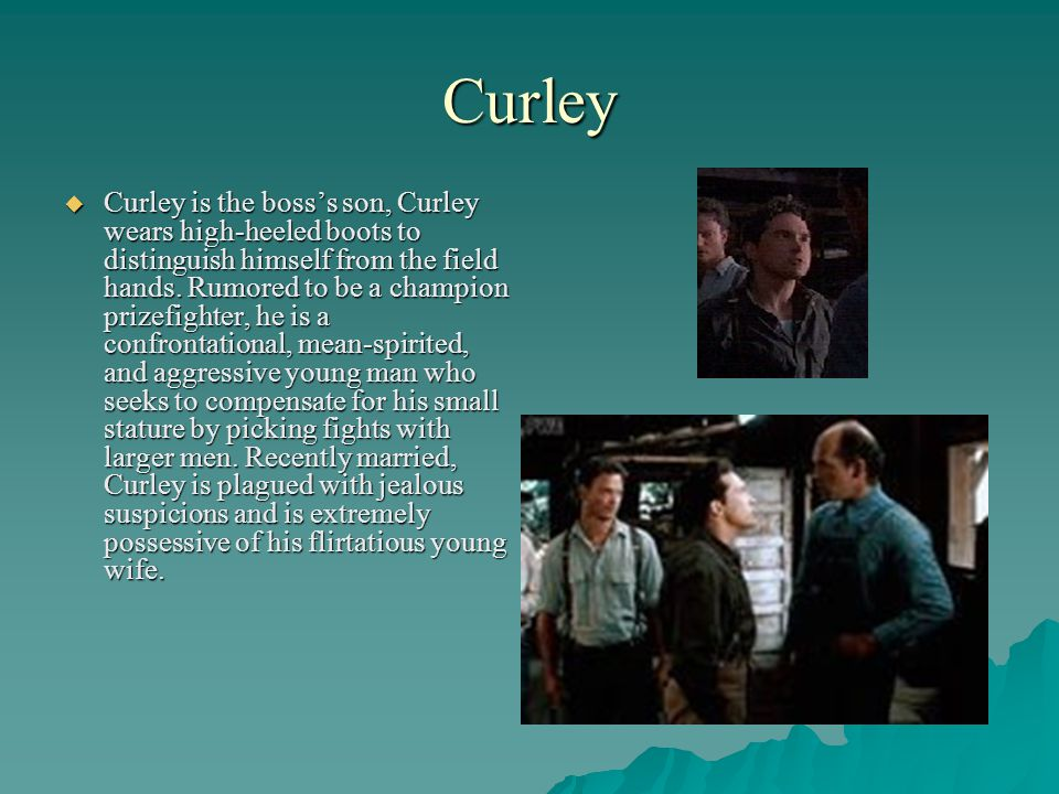 Curley Curley is the bosss son, Curley wears high-heeled boots to distinguish himself from the field hands. Rumored to be a champion prizefighter, he