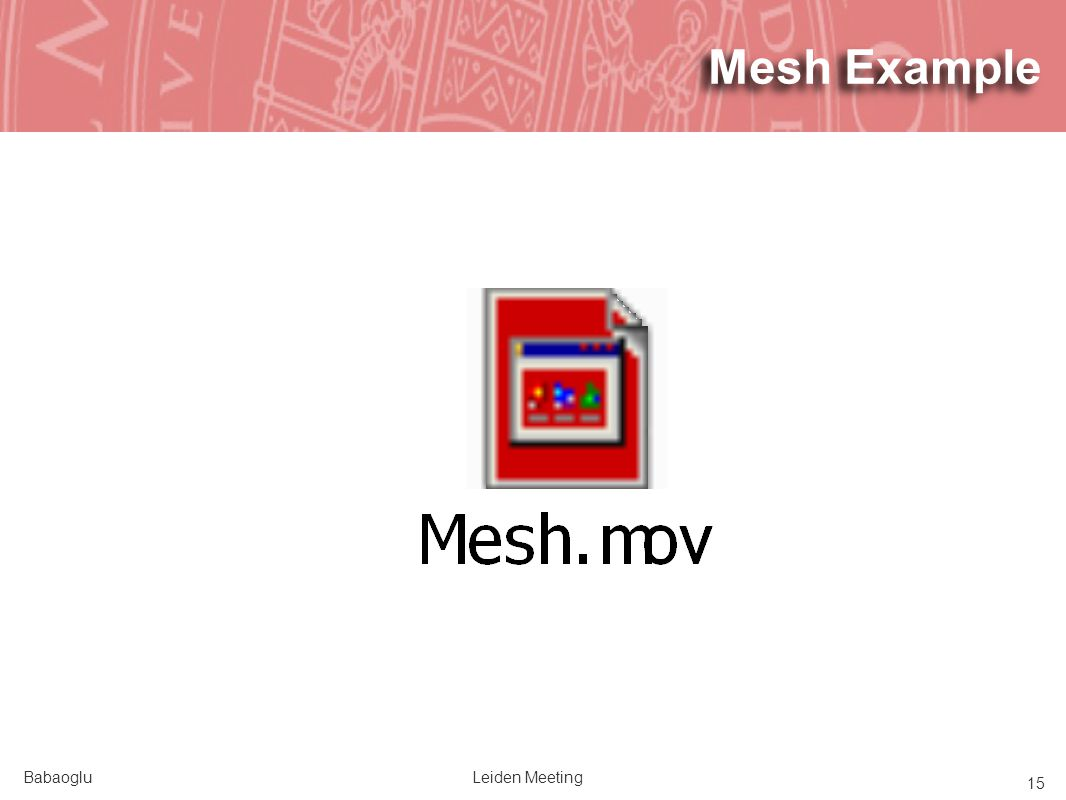 BabaogluLeiden Meeting 15 Mesh Example