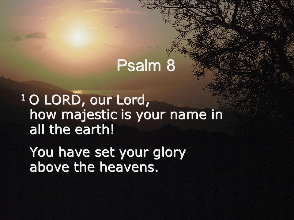 Psalm 8 1 O LORD, our Lord, how majestic is your name in all the earth! You have set your glory above the heavens. 1 O LORD, our Lord, how majestic is