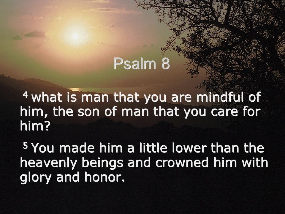 4 what is man that you are mindful of him, the son of man that you care for him? 5 You made him a little lower than the heavenly beings and crowned hi