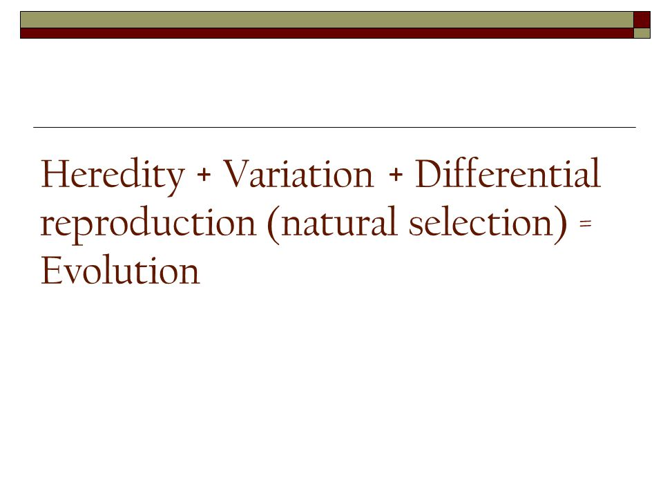 Heredity + Variation + Differential reproduction (natural selection) = Evolution