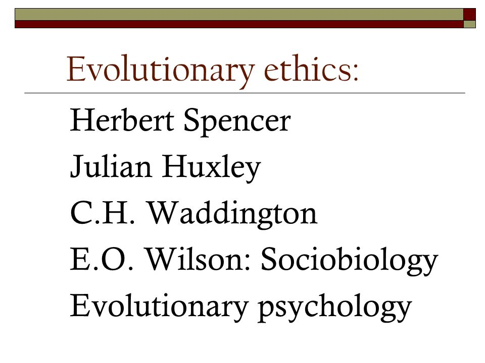 Conclusions Capacity of ethics: Biological evolution Codes of ethics: Cultural evolution (including religion)