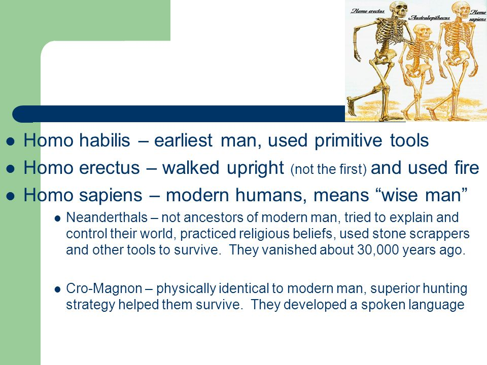 Early Man Key Terms Culture – peoples unique way of life Hominid – early upright beings Artifact – man made object from previous cultures Mary Leakey